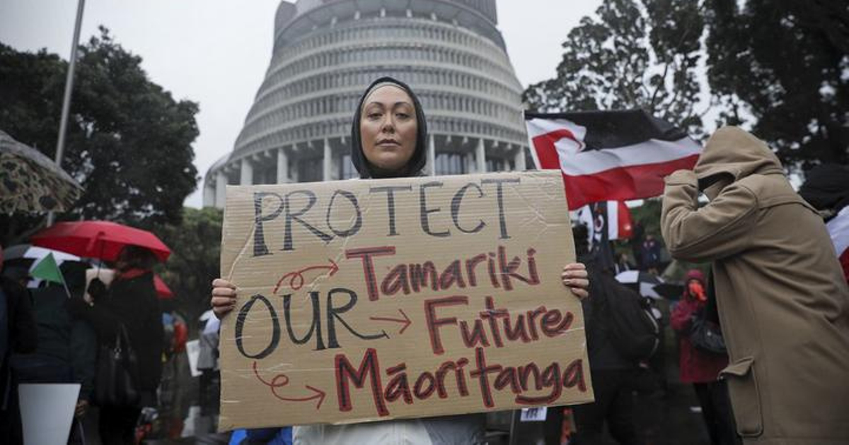 A woman holds a sign outside the Beehive at the Hands Off Our Tamariki rally: 'Protect our tamariki, our future Māoritanga