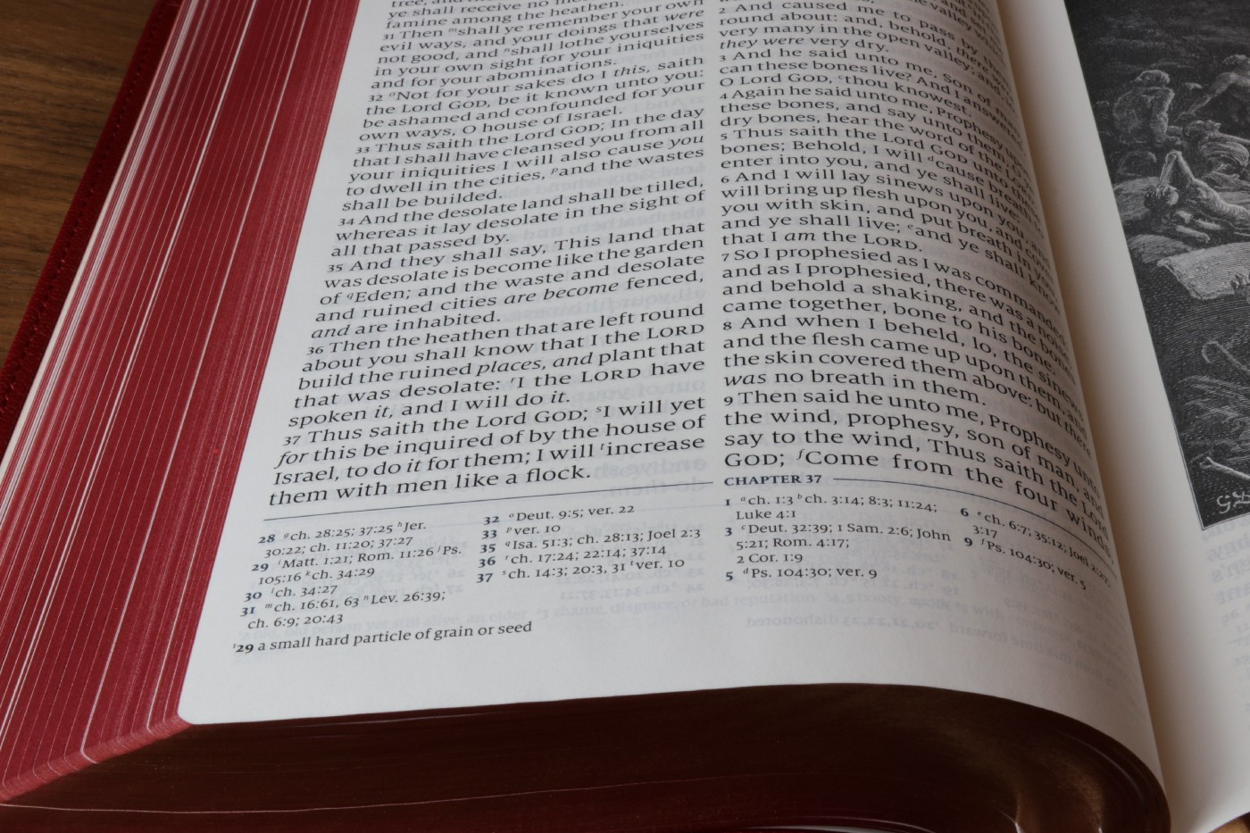 A book showing footnote citations — used for decoration only