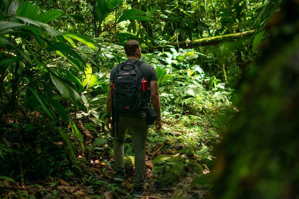 A man leading the way through the jungle
