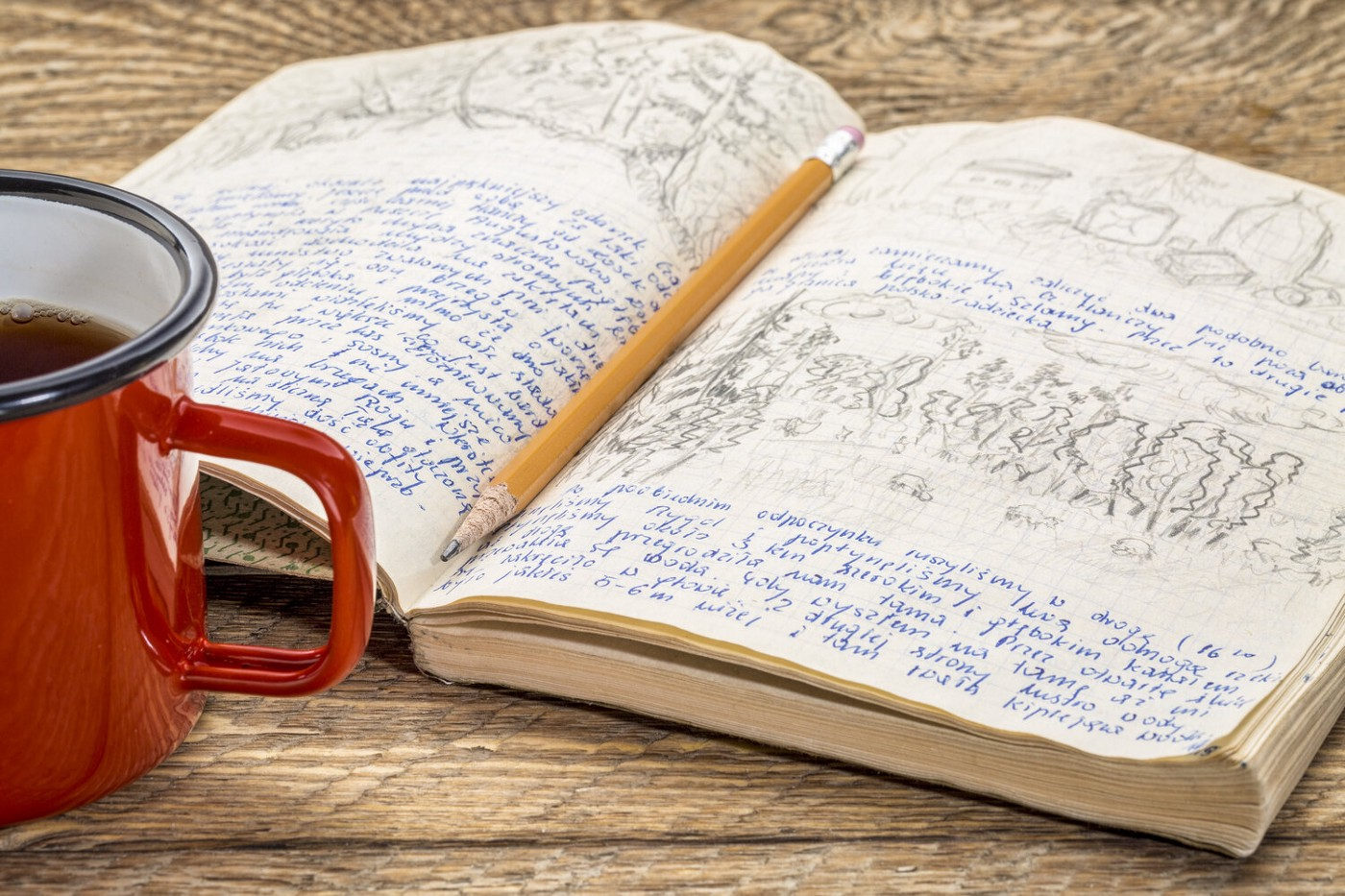 image of a journal with writing