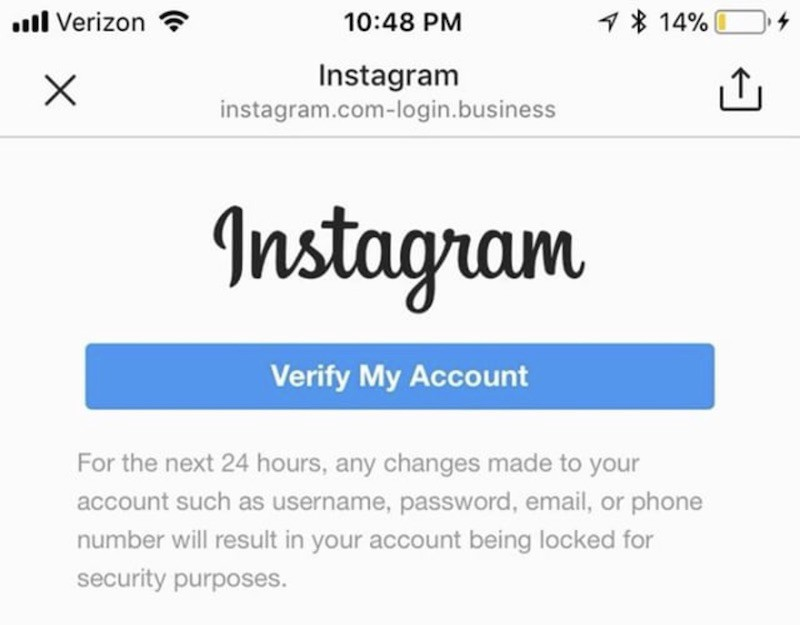 BEWARE: Direct Message Instagram DM Scam - Wolf Millionaire - Medium
