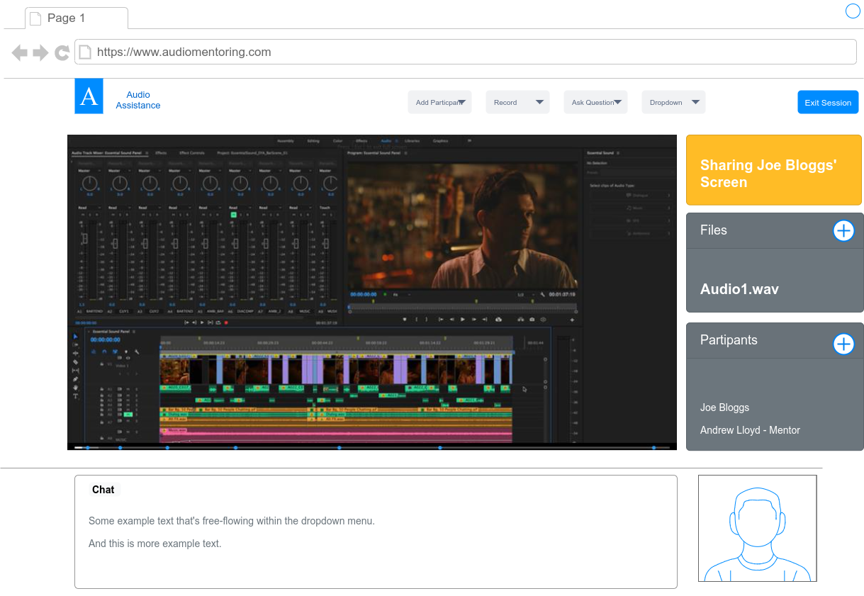 A mock-up of an audio mixing mentoring platform could look like. Features screen sharing, participants, chat, file sharing.