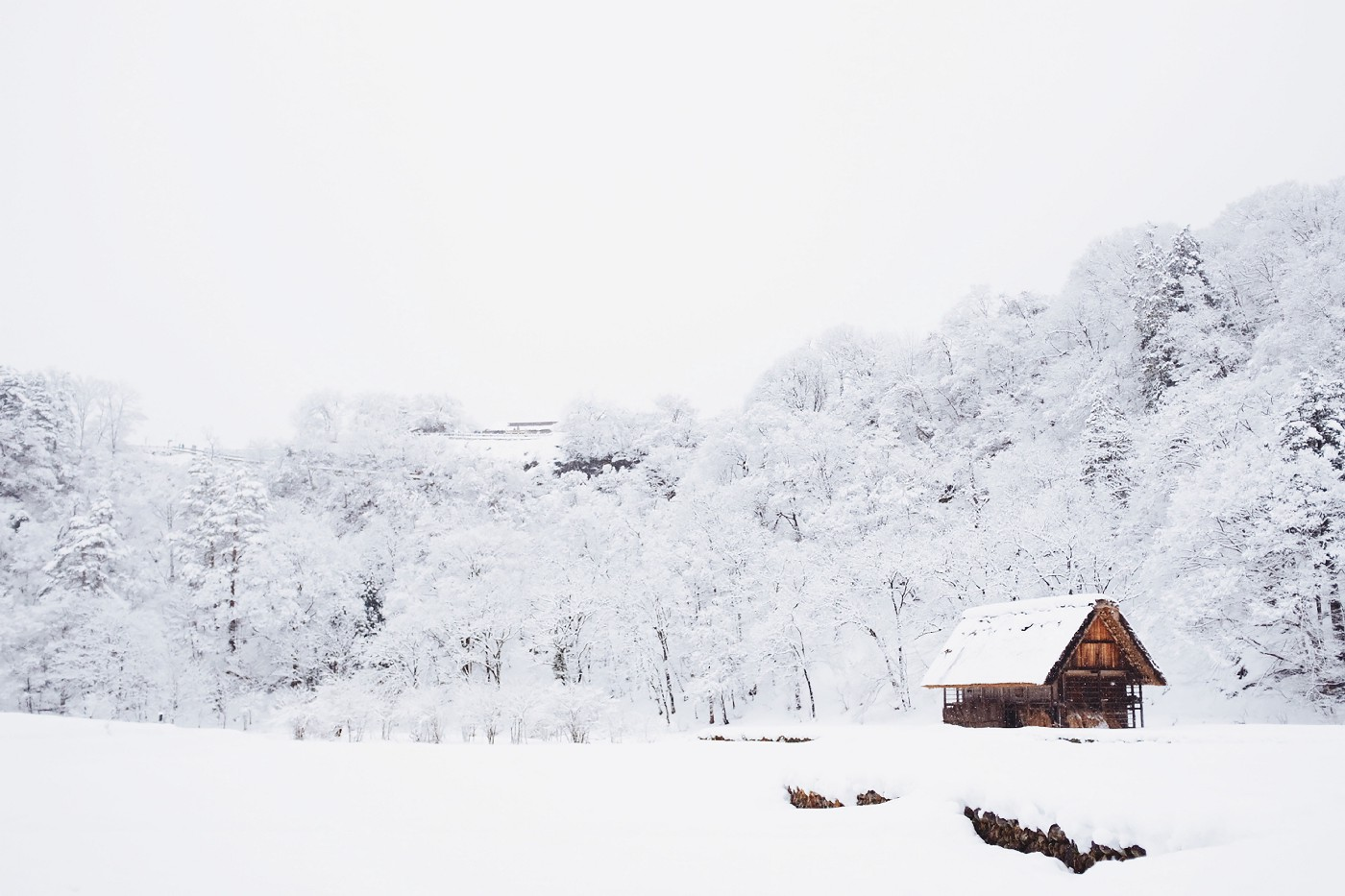 A snow covered cabin in a snow covered clearing in front of a snow covered forest