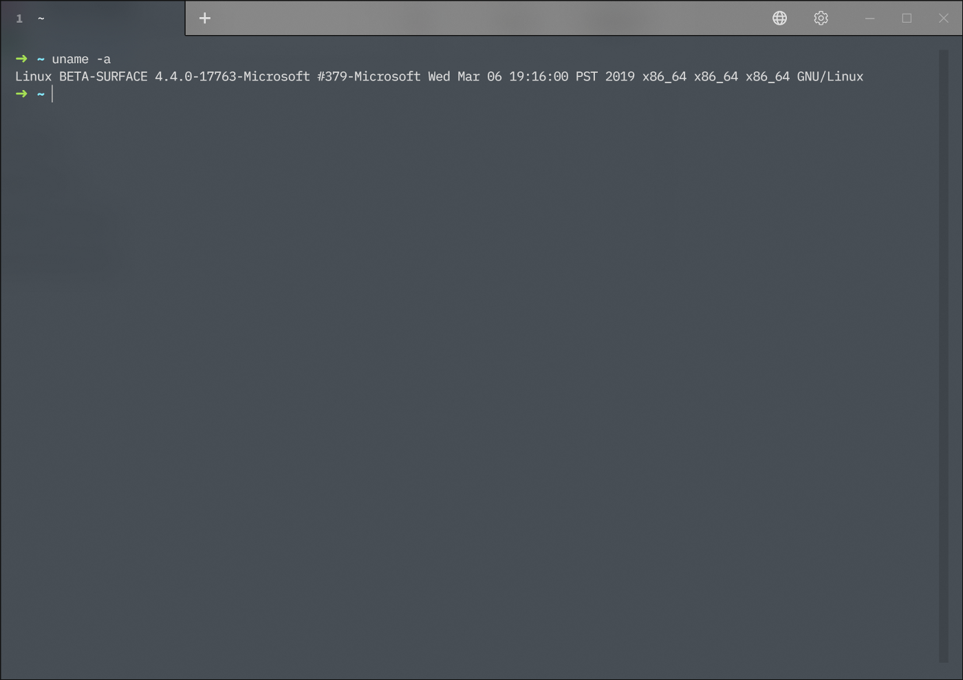 Setup Go Development Environment with VS Code and WSL on Windows