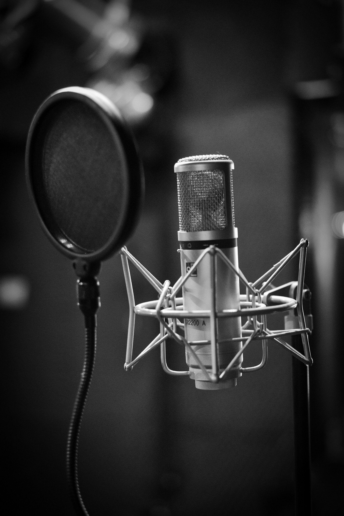 A black and white photograph of a microphone
