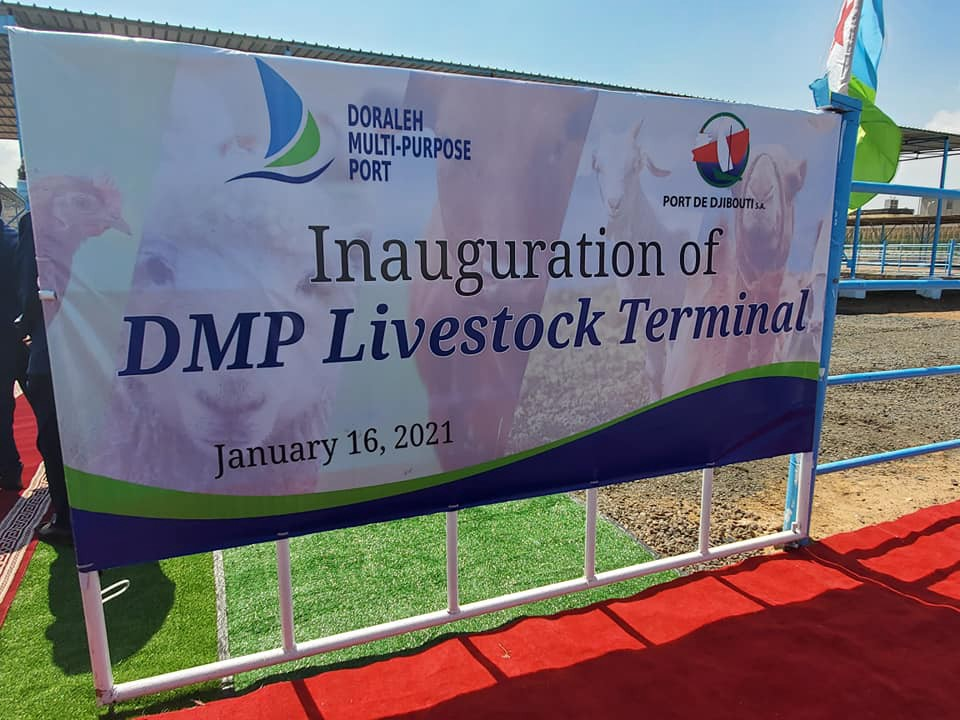 Minister of Agriculture Mr. Oumer Hussein underlines the newly inaugurated livestock terminal set to prop up Ethiopia's live animal export