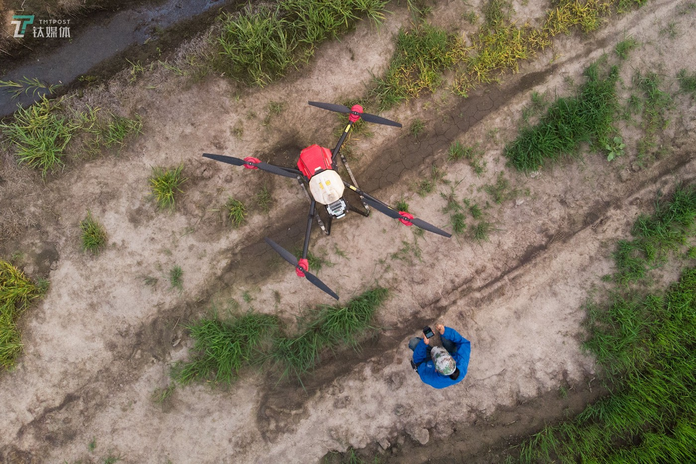 The new farmers with spraying drones in China's northeast farm land