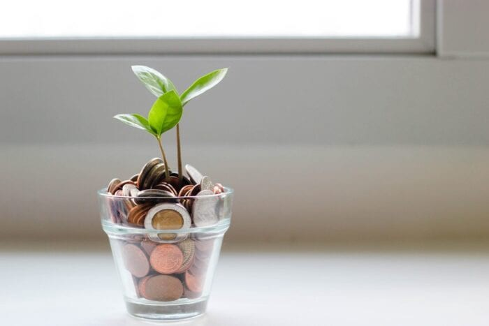 Planter full of coins with new leaves growing out of the top