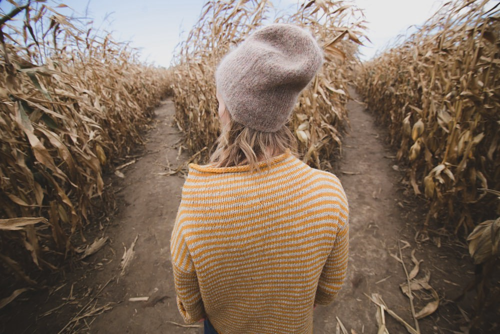 Woman between two paths of a corn field
