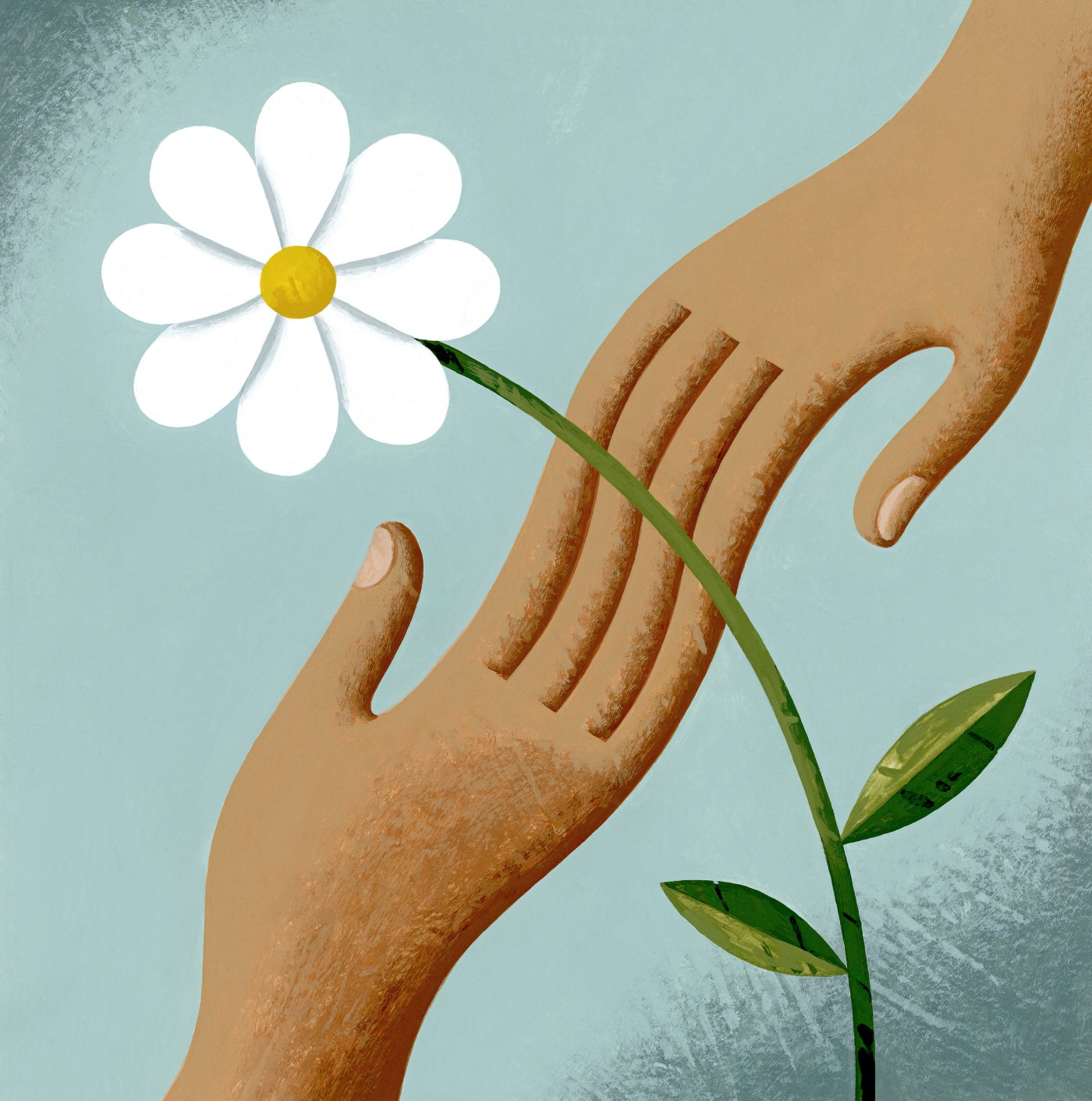 two hands meeting at the stem of a white flower