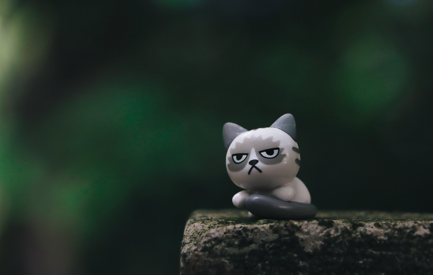 A toy cat with a grumpy mood staring out in the space.