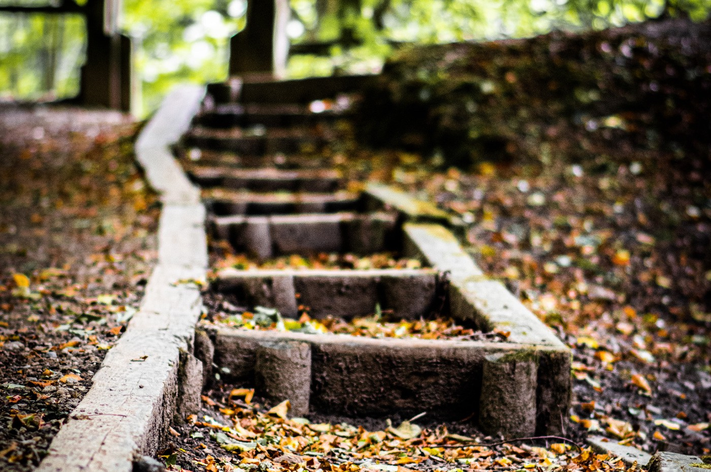 Wooden steps covered in leaves.