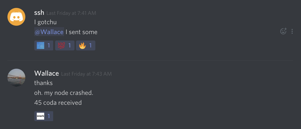 Screenshot of the Discord chat where ssh hellped Wallace