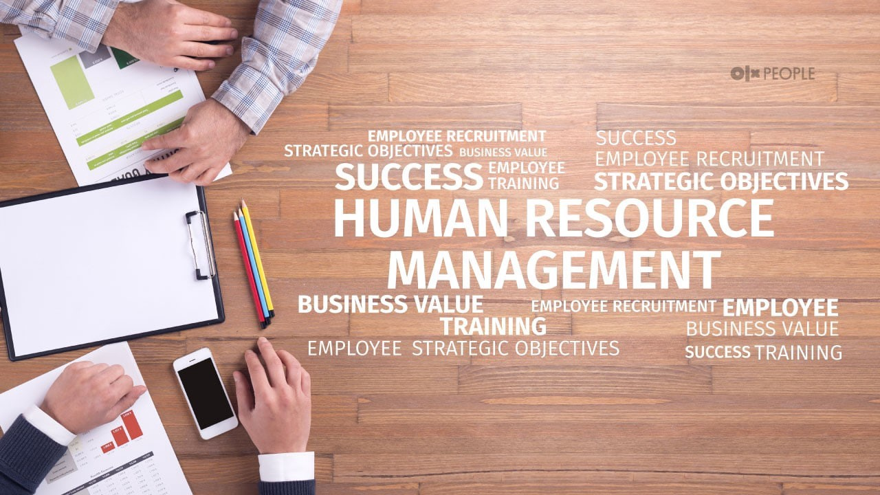 What are the five main areas of HR Executive?