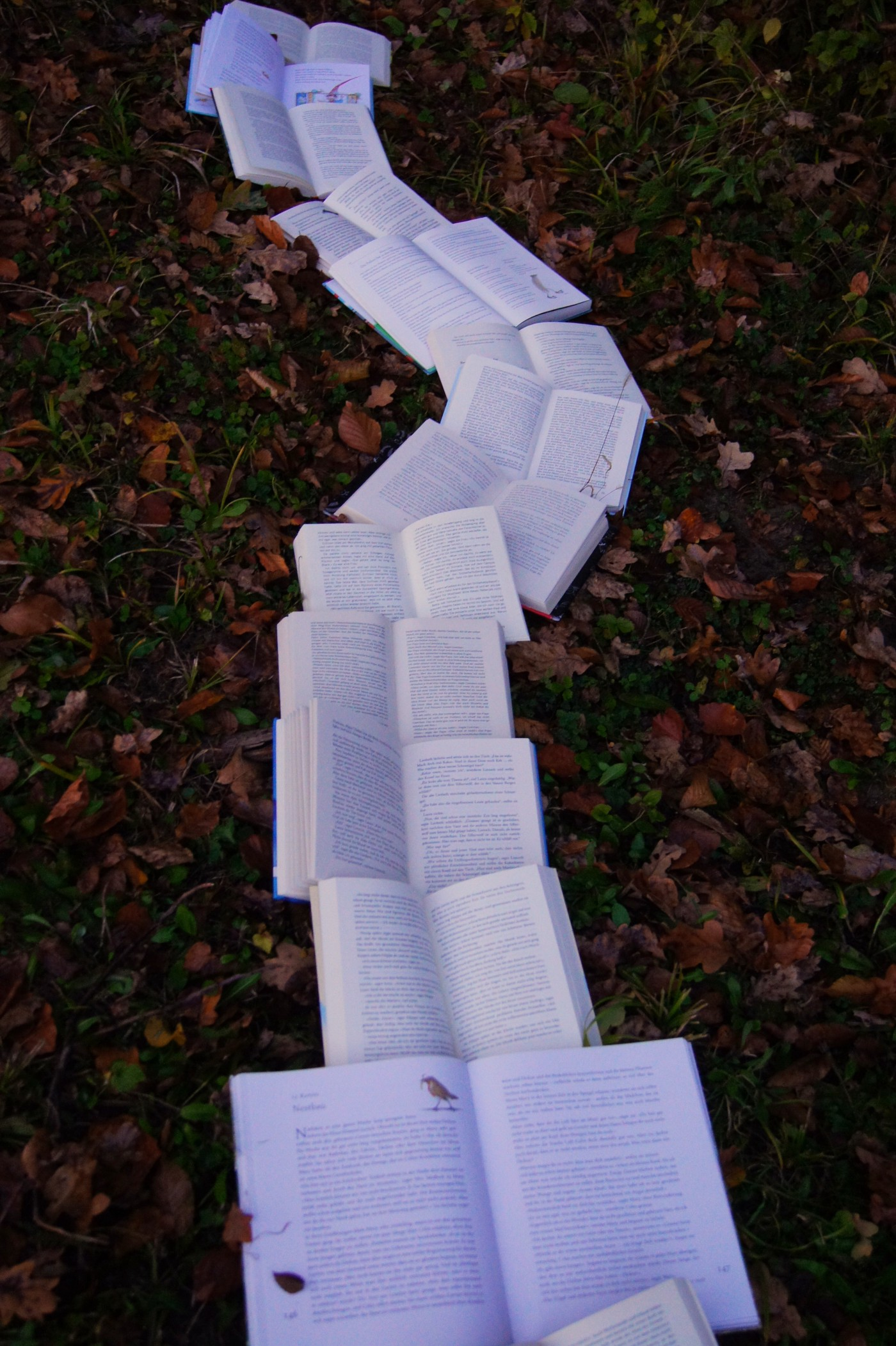 A trail of open books