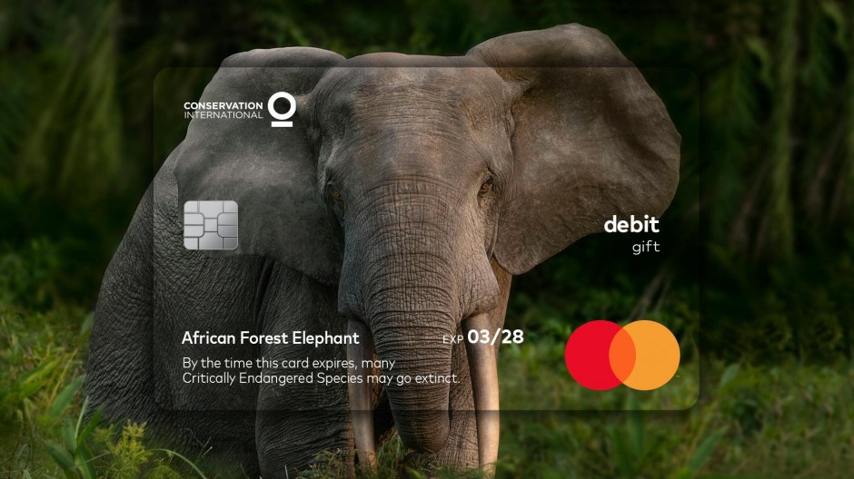 Mastercard Expiration Date campaign