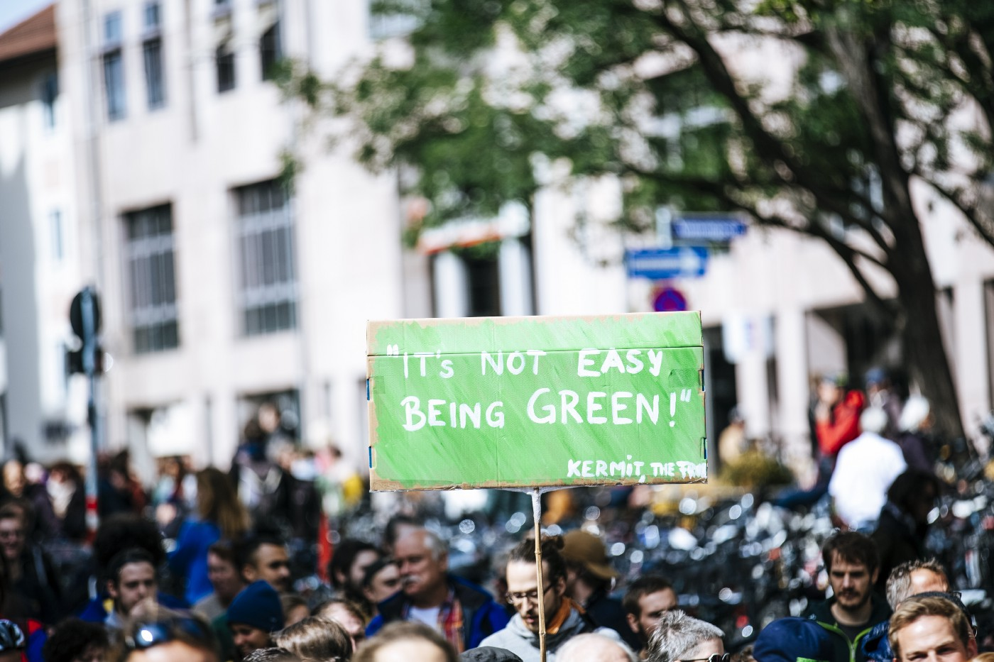 """A cardboard cutout in focus that reads """"It's not easy being green!"""" with a crowd in the background"""