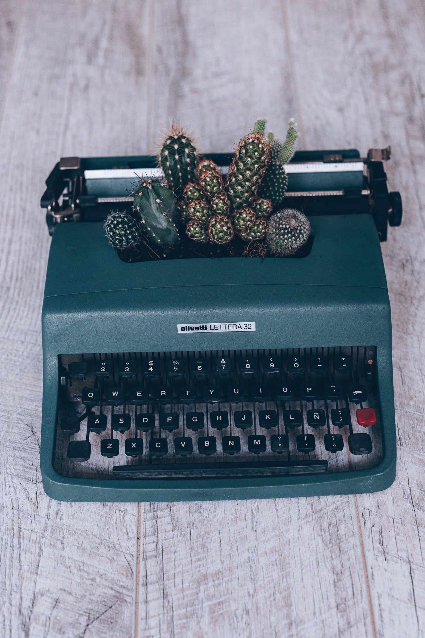 Manual typewriter with succulents planted in it.