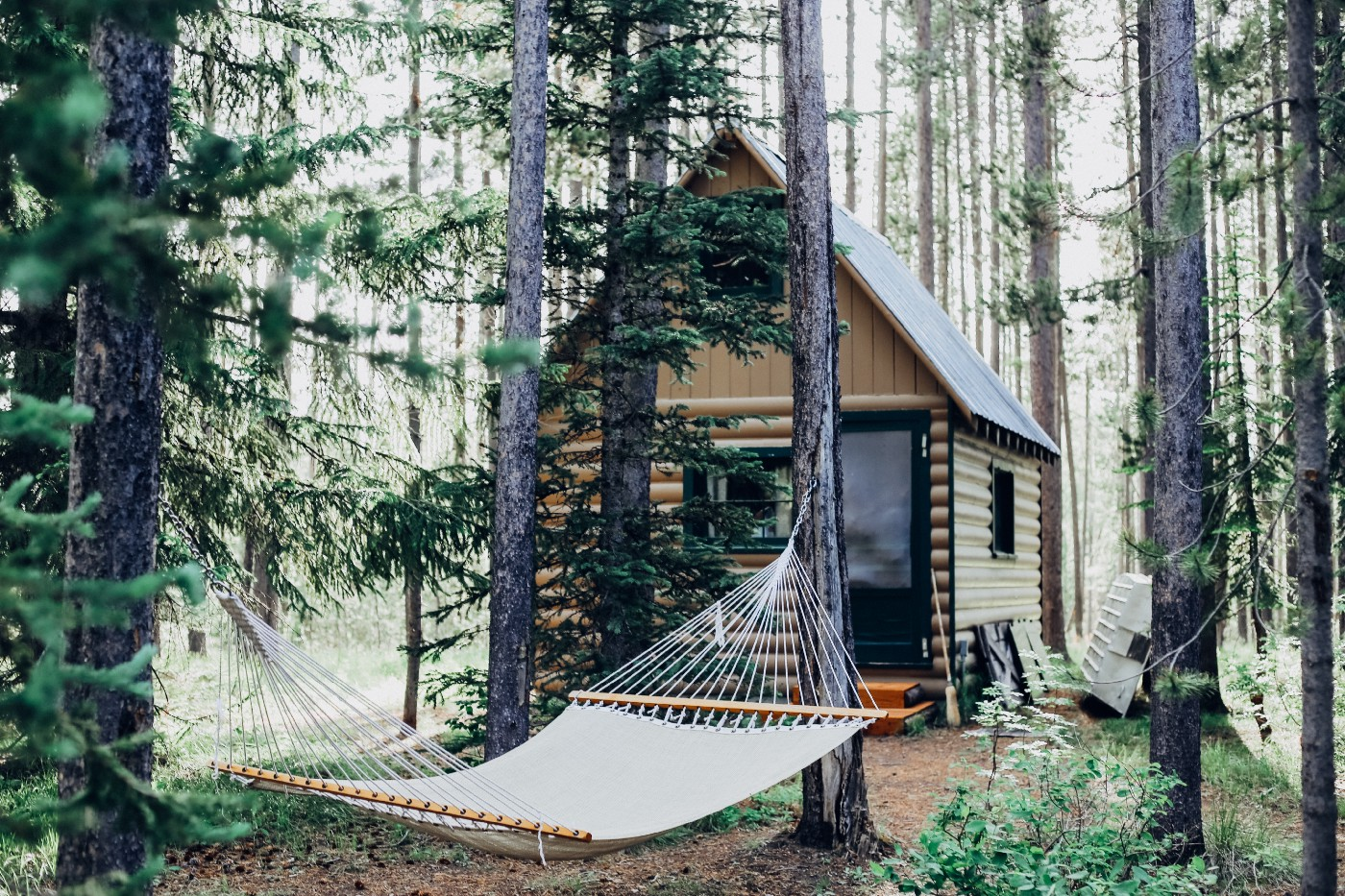 cabin in the woods with hammock