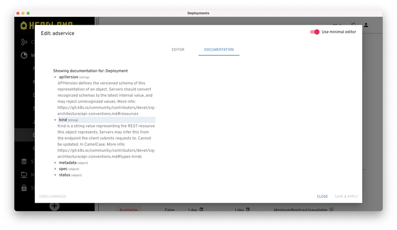 Viewing the API docs in the Headlamp user interface