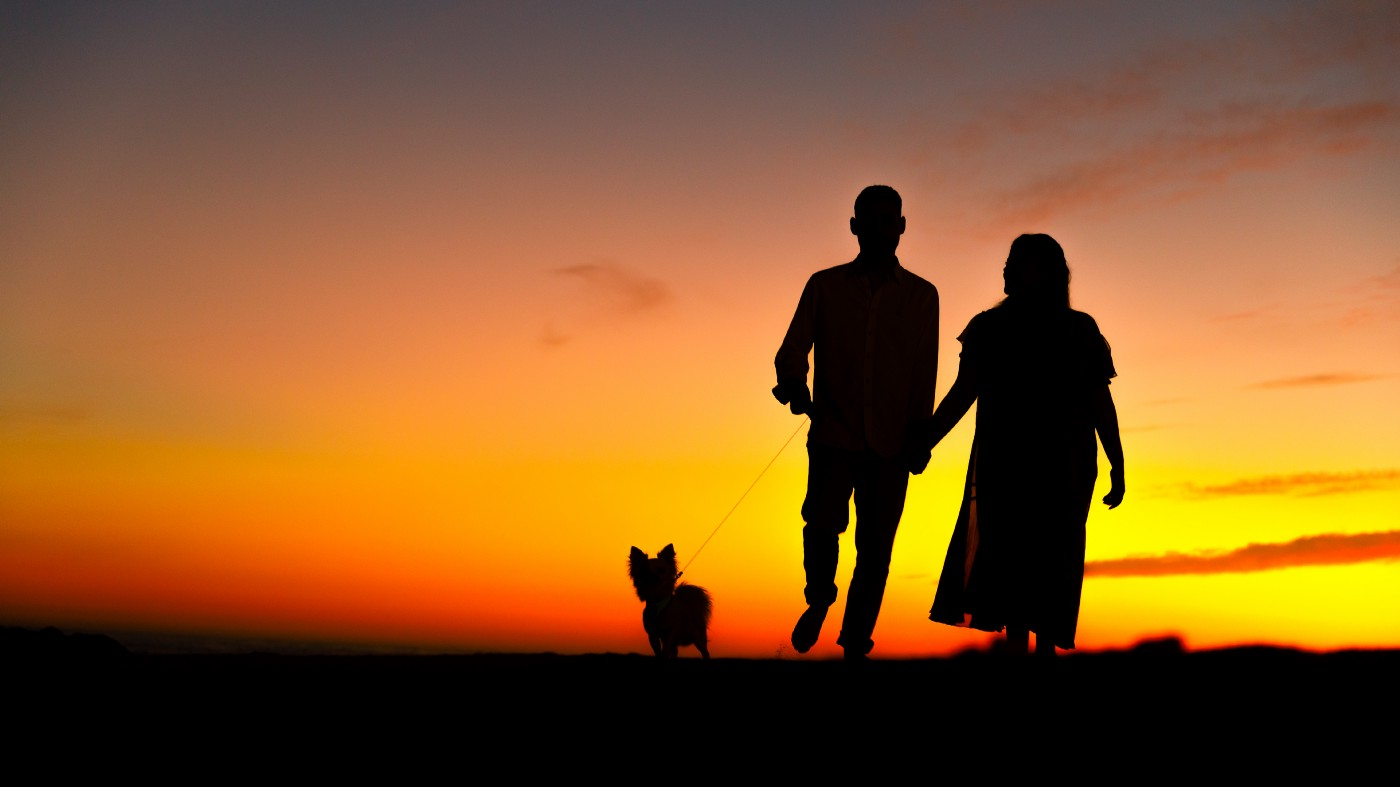 the image shows the silhouette of a man and woman and their dog waling off into the sunset