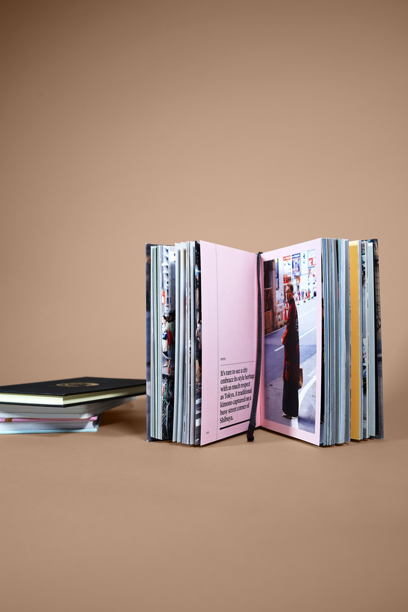 A book that could be bound or created from separate pdf documents