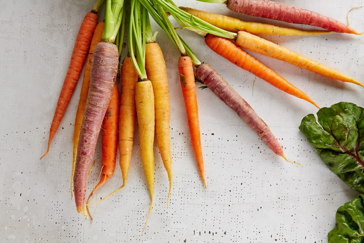 an array of carrots of different colors spread in a fan shape