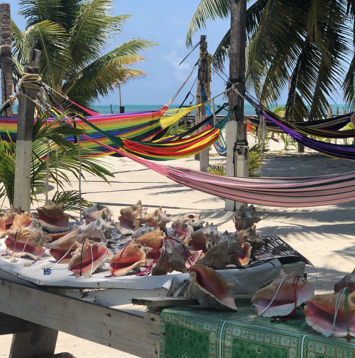 3 Things To Do This Winter in Caye Caulker, Belize