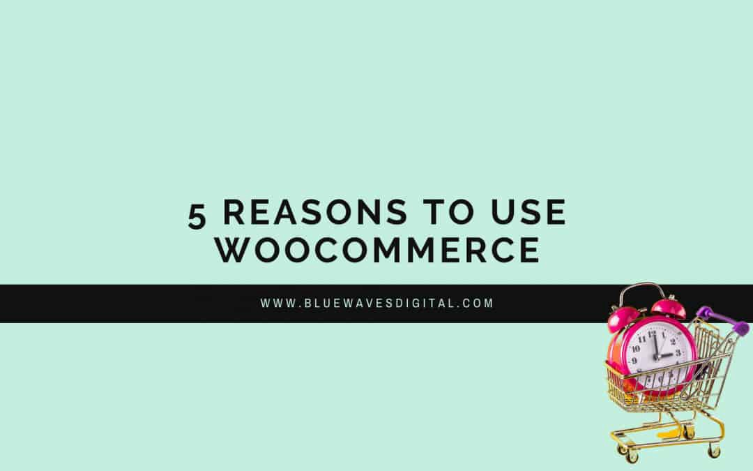 WooCommerce — 5 Reasons You Should Use It
