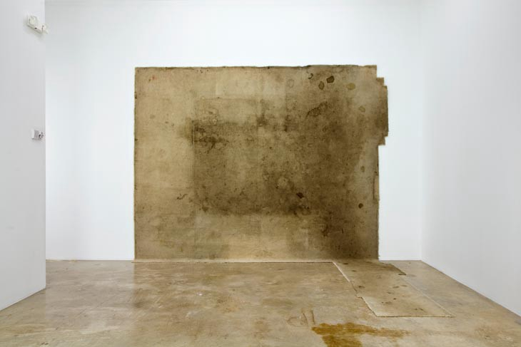 Rodney McMillian, Untitled, Carpet from an American living room,2005