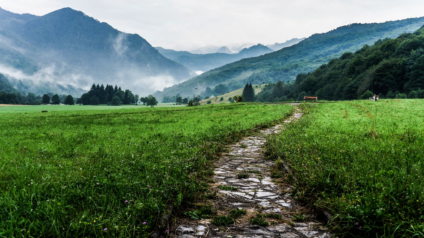 Image of trail to mountains — scenic