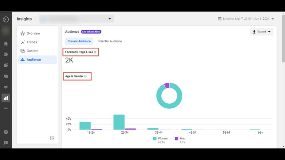 Facebook Business Suite Insights