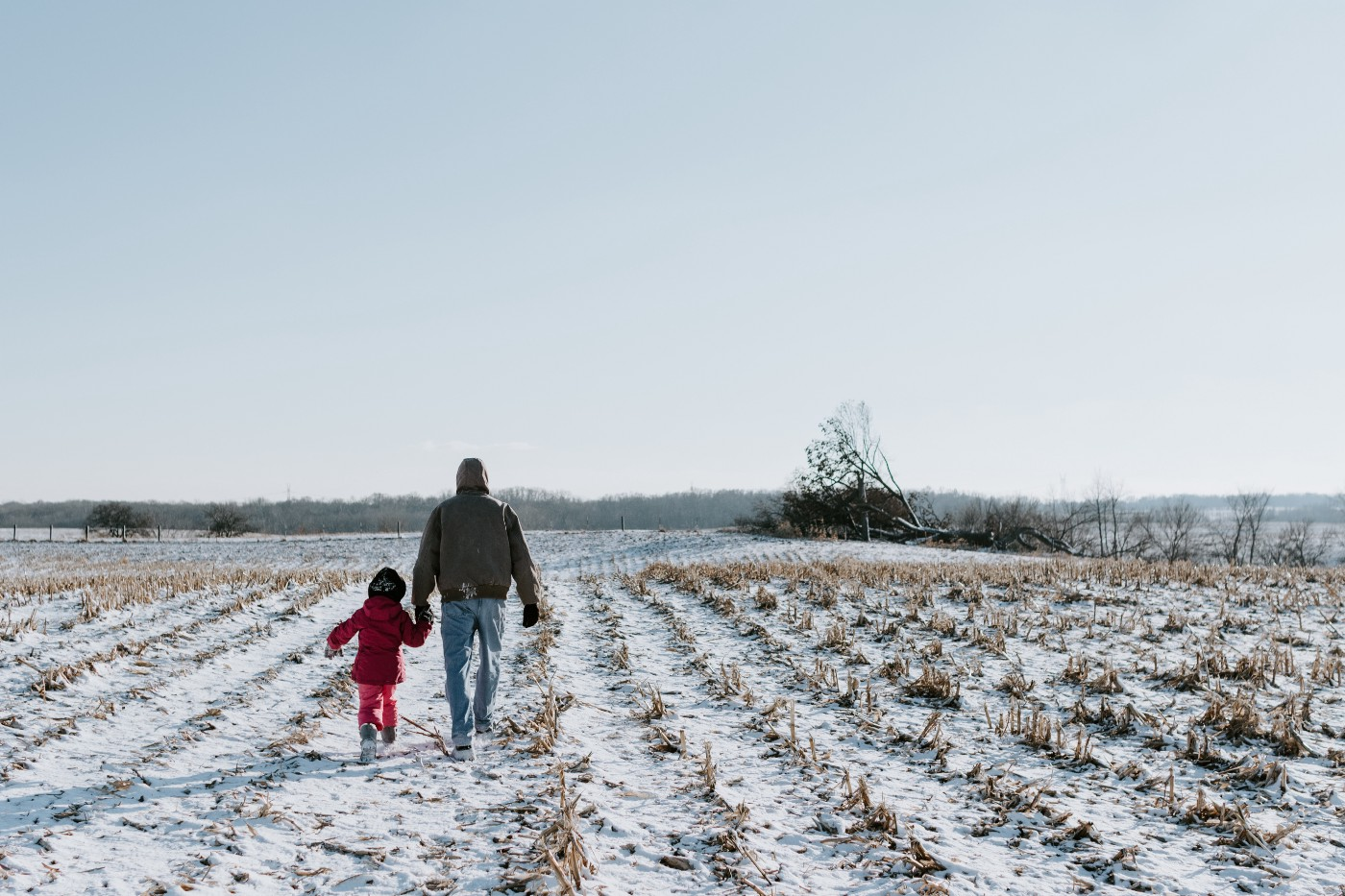 Rear view of father and daughter holding hands while walking on snow covered landscape