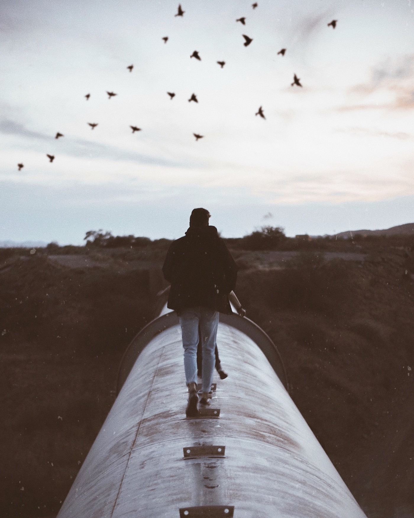 A man walking on a train's roof with his girlfriend. He is positive with what is ahead, seeing birds flying and bright sky.
