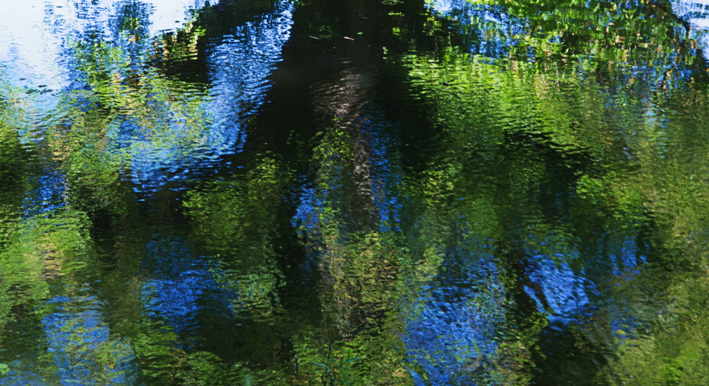 Monet-like ripples in the surface of the Royal Military Canal at Hythe, Kent, England