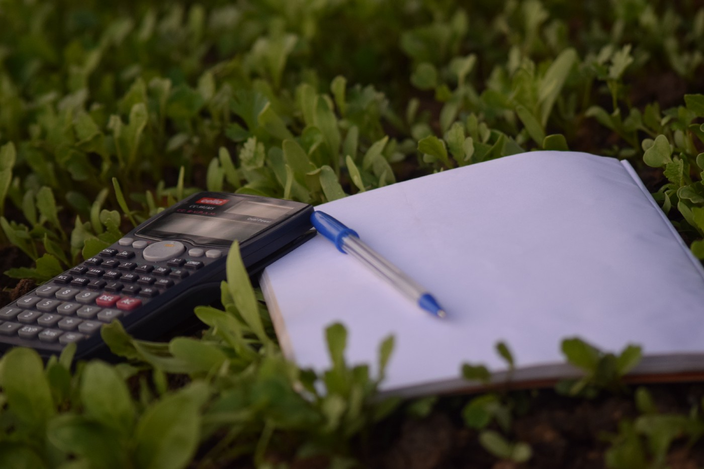 A calculator, pen & paper laying on the green grass.