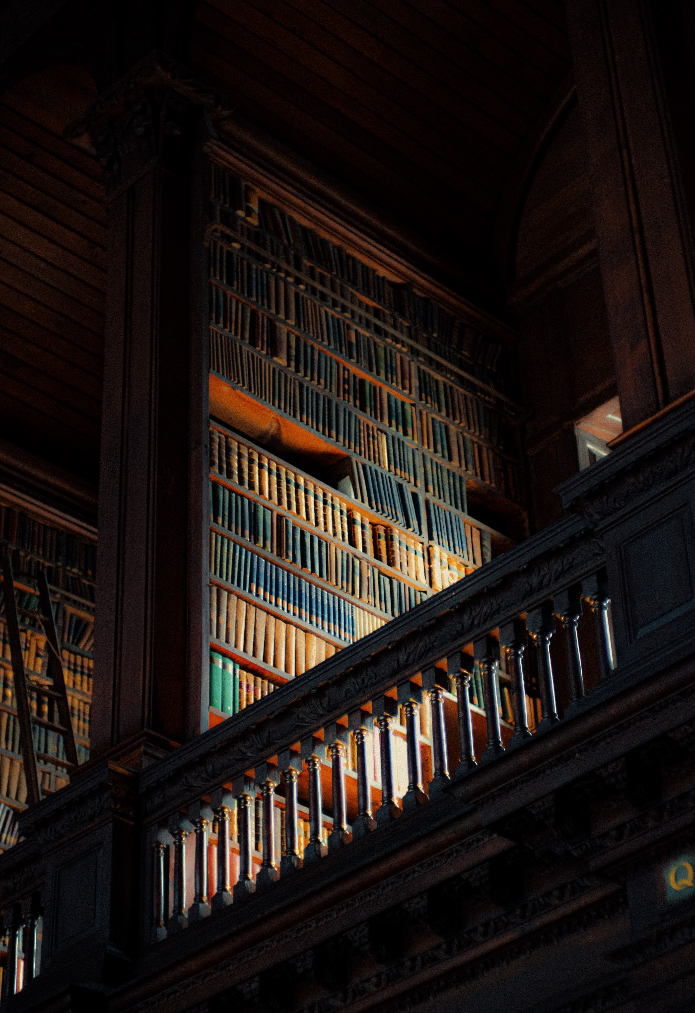library shelves in the dark of night
