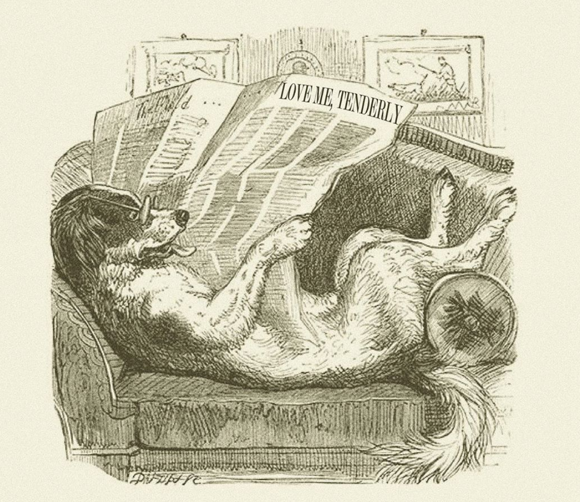 """Antique-looking illustration of a dog with glasses lying on a couch, reading a newspaper labeled """"Love Me, Tenderly."""""""