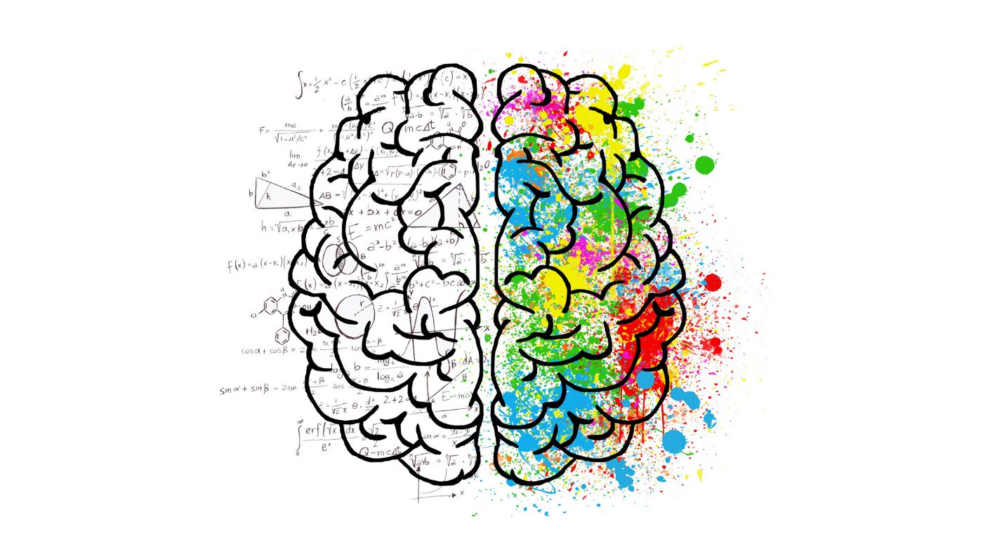 A drawing of a brain with one side in black and white and the other in multiple colors.