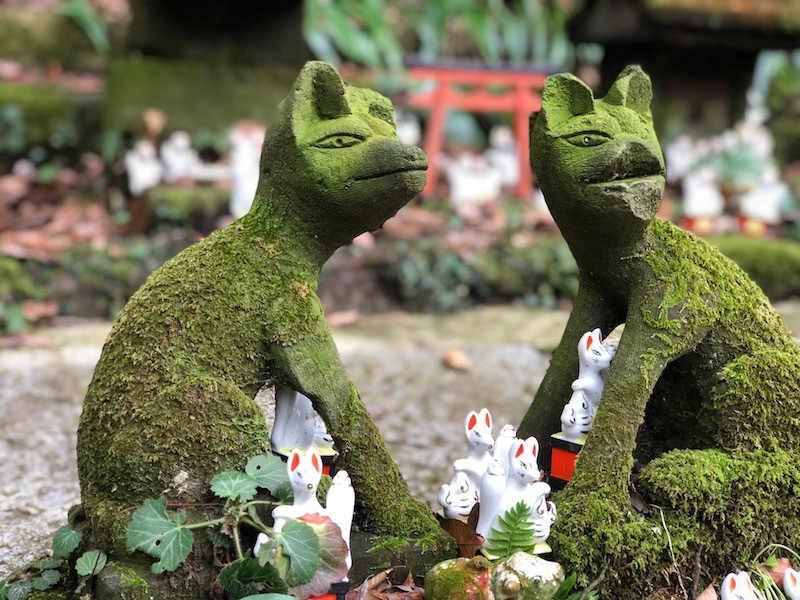 Benzaiten & the Fox - A Different Side of Japan