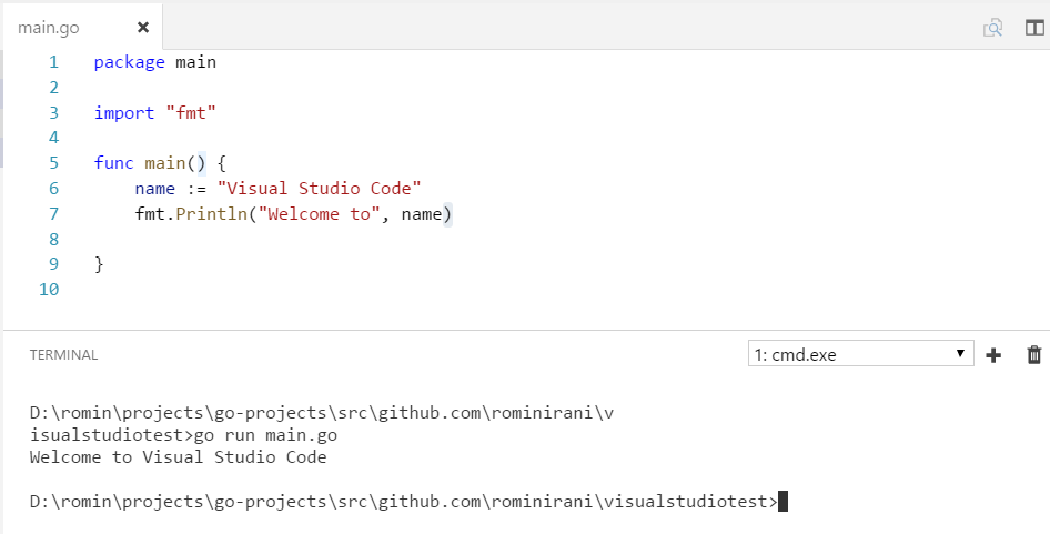 Setup Go Development Environment with Visual Studio Code