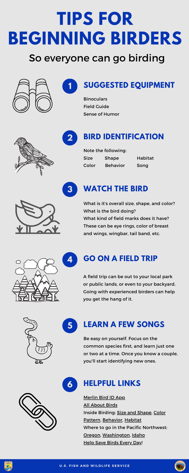 Tips for beginning birders graphic in English.