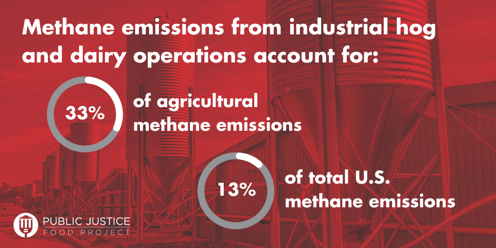 """A red graphic reading: """"methane emissions from industrial hog and dairy operations account for 33% of agricultural methane emissions, 13% of total US methane emissions."""" Two pie charts display the percentages and there are metal siloes in the background."""