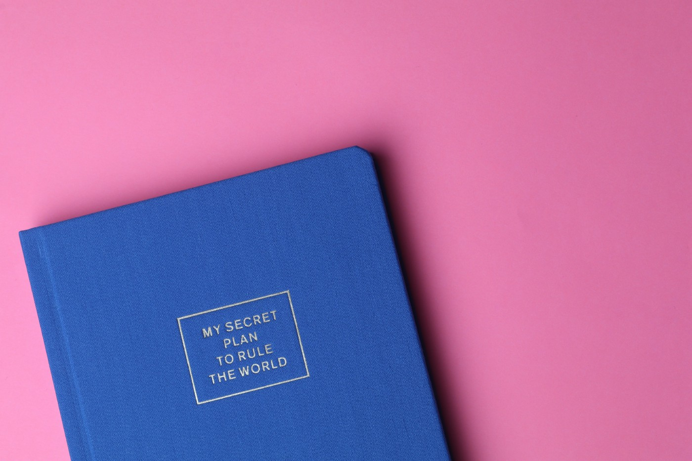 """Blue Diary with """"My Secret Plan to Rule the World Book"""" written on front cover, on pink background Nichola Scurry Medium"""