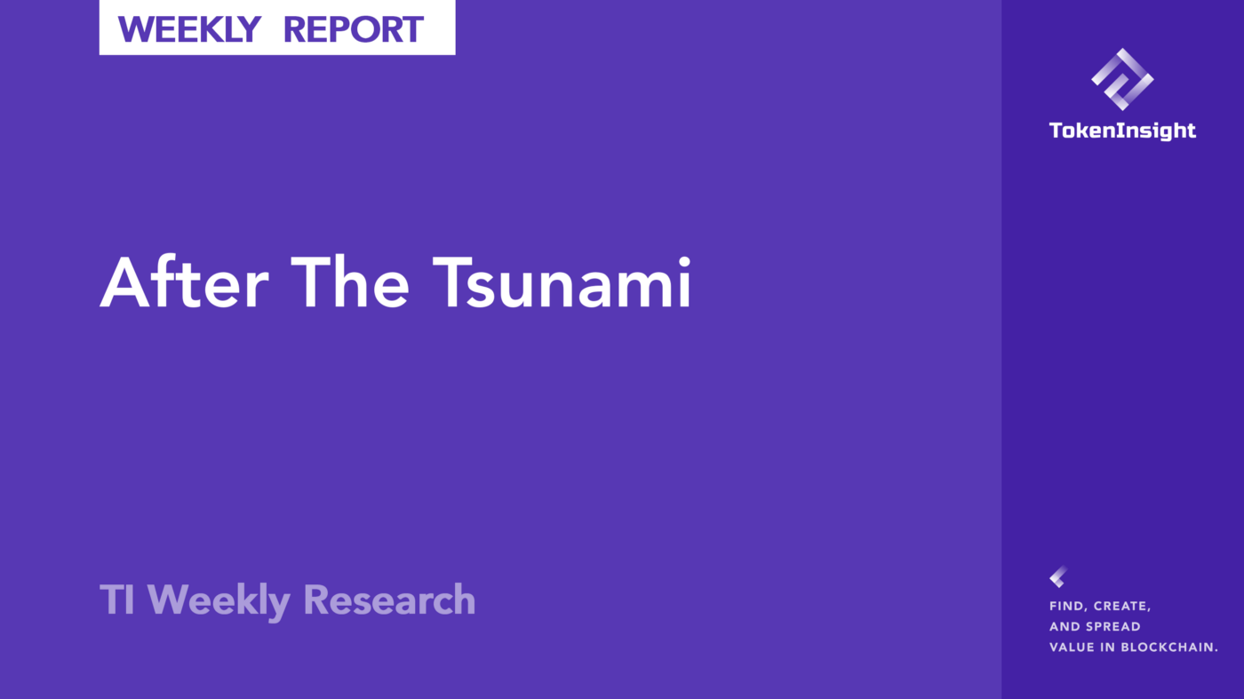 TI Weekly Research:After The Tsunami | TokenInsight