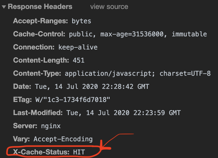 Nginx caching seen in browser developer tool