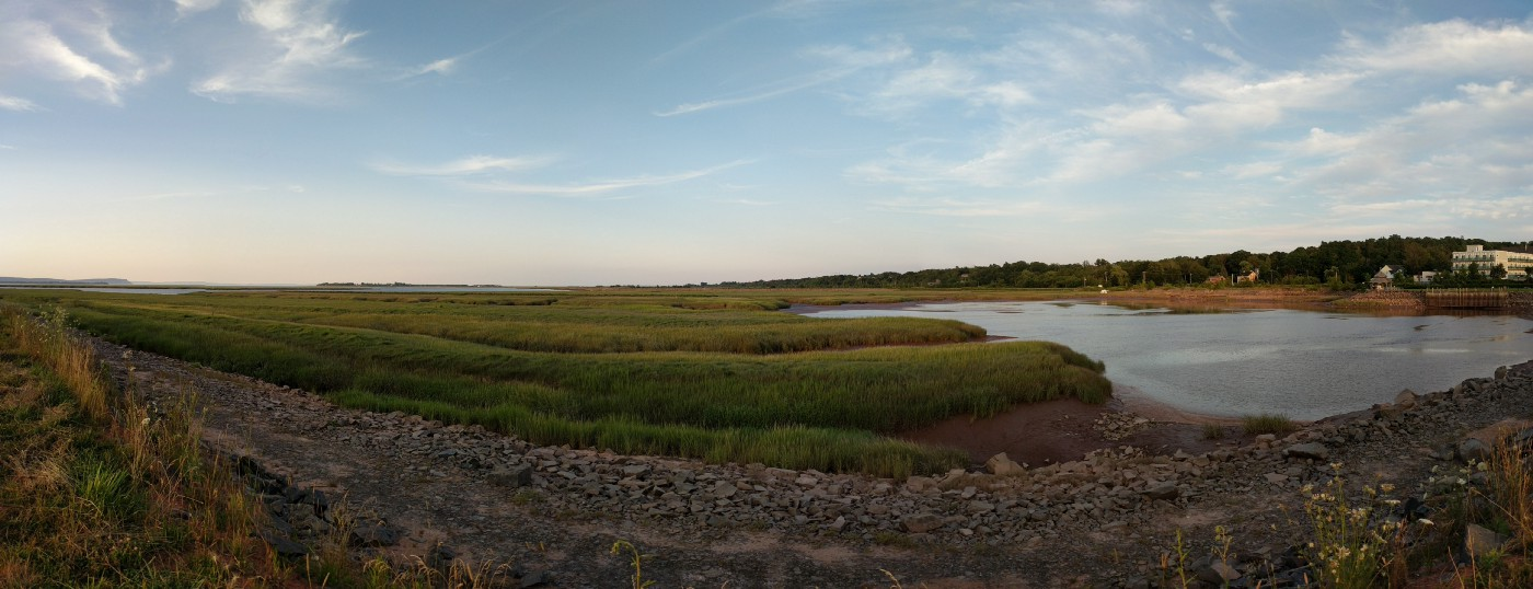 Green marshlands sweeping towards a body of water.