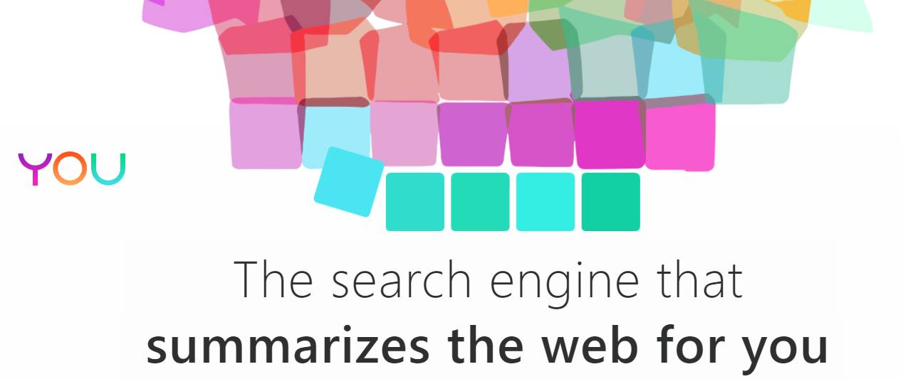 """A screenshot from you.com that reads """"The search engine that summarzies the web for you."""