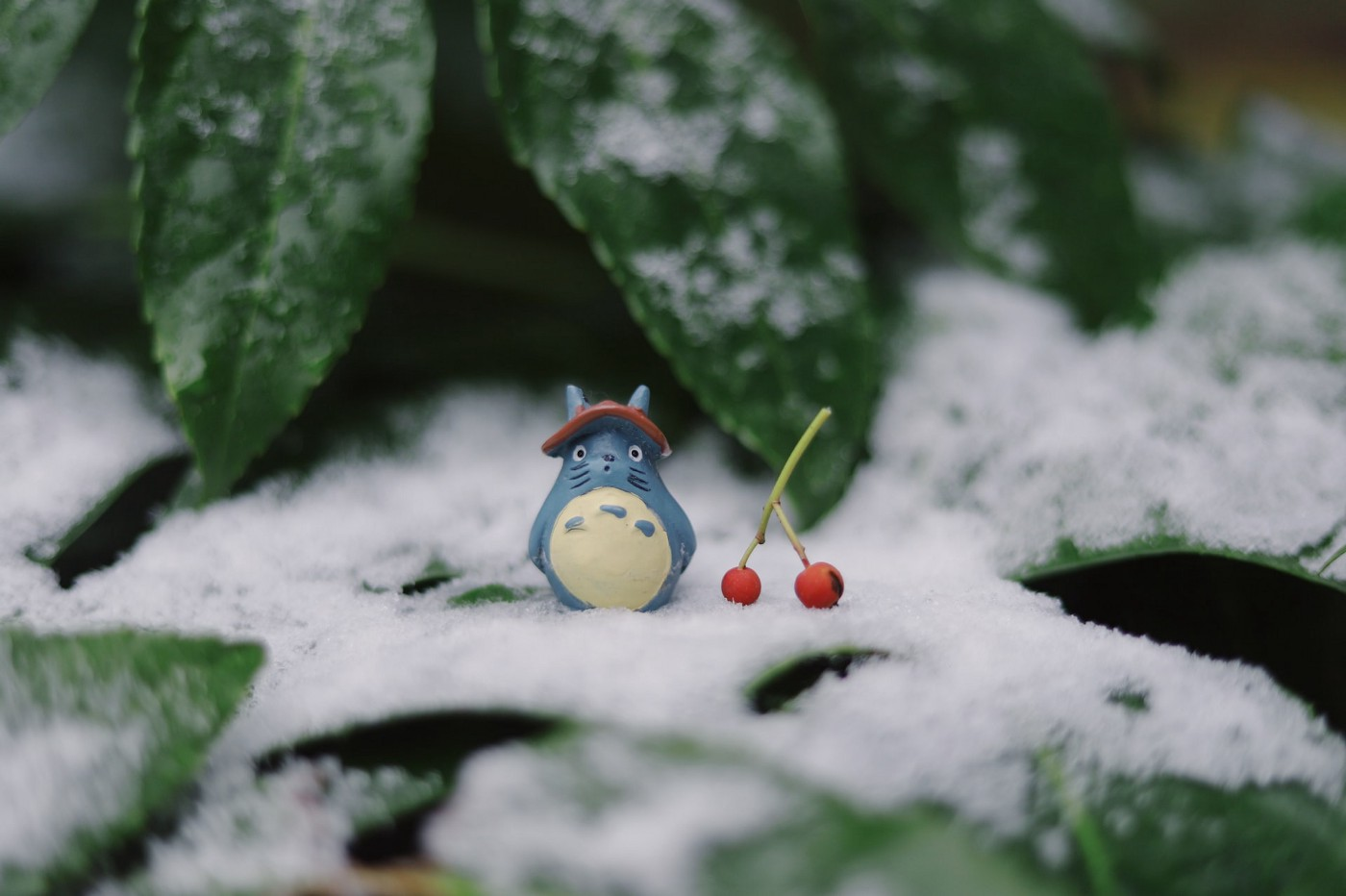 "A cover photo for the article K-Nearest Neighbors. Picture shows Totoro character from the animation ""My neighbor Totoro""."