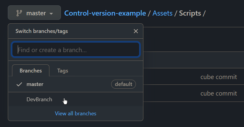 The DevBranch is now visible in GitHub as it was pushed